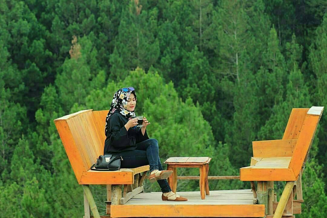 Hutan Pinus Kragilan - Nginapdijogja