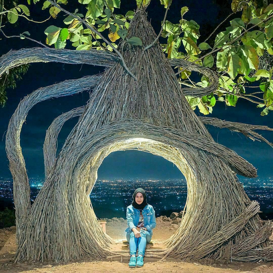 Hutan Pinus Pengger - Nginapdijogja