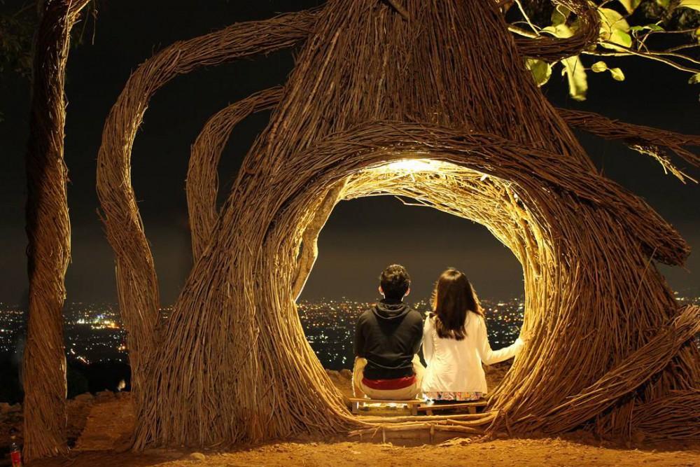 Hutan Pinus Pengger Di Yogyakarta