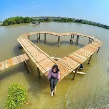 Hutang Mangrove Adalah Salah Satu 25 Destinasi Wisata Di Jogja