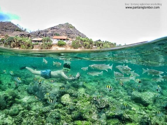 Pantai Ngalmbor Adalah Salah Satu 25 Destinasi Wisata Di Jogja