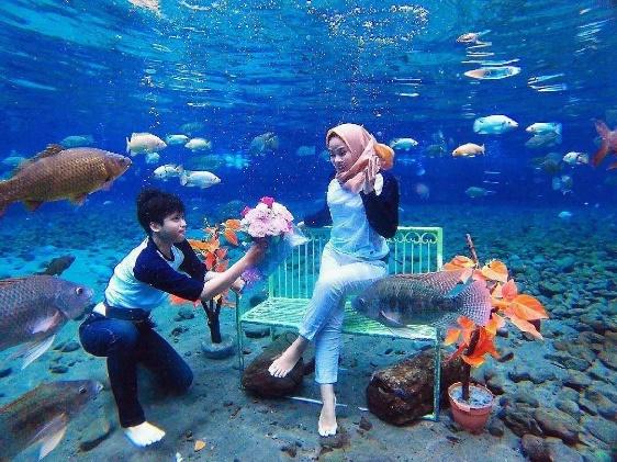 Umbul Ponggok Adalah Salah Satu 25 Destinasi Wisata Di Jogja